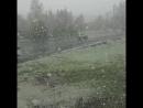 24 мая Весна на исходе Через 7 дней лето ЛЕТО А снег не знал и падал