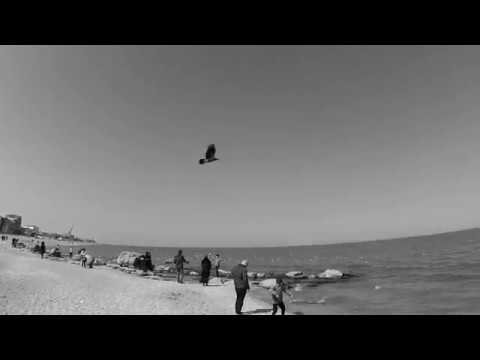 Литий - Фармацевт (Official video).