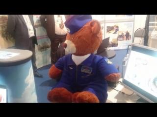 робот-медведь поясняет за контору