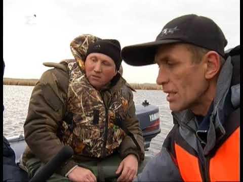 Рискуют попасть в свои сети. Браконьеры могут оставить Челябинскую область без рыбы
