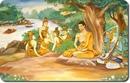Однажды спросили учителя о том, как можно распознать духовного человека. И учитель ответил…