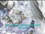 Каскад - А у разведчика судьба порой
