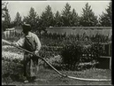 «Политый поливальщик»1895 - Первая кинокомедия