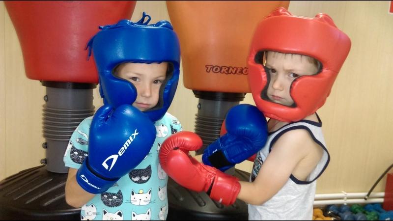 Бокс FITness LIVE Талдом
