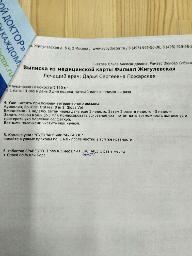 Москва, Роналдо , кобель, 04.03.2016 - Страница 2 NVY-oVyPKi8