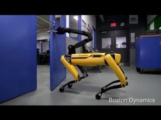 Новый трюк робота-собаки Boston Dynamics