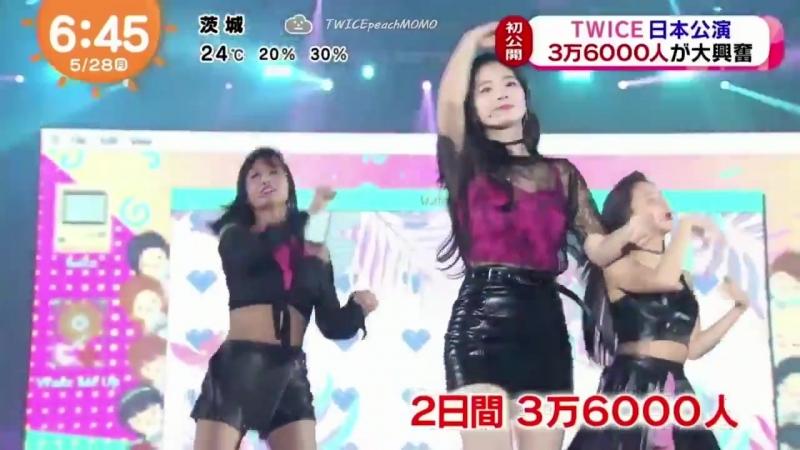 180528 Twice в программе Fuji TV @ Mezamashi TV.