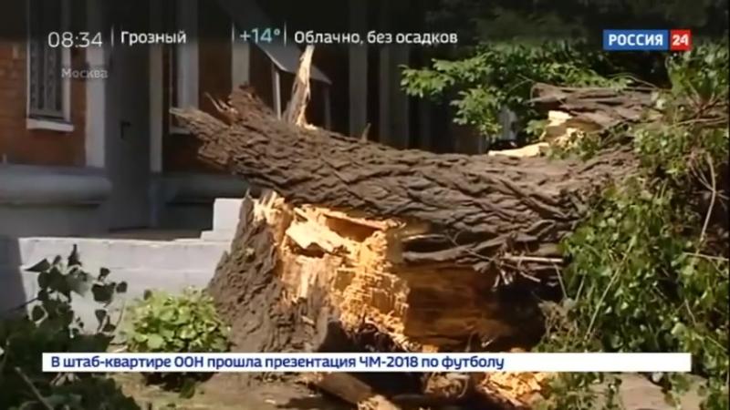 Супершторм оказался в 7 раз мощнее московского урагана - Россия 24