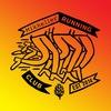 6 января: Клубный забег Mikkeller Running Club