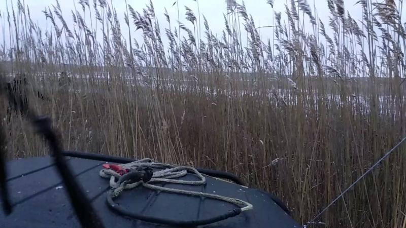 Камыш и болото не помеха ВАЗу