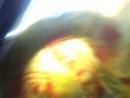 Video-2012-08-26-10-07-27.mp4