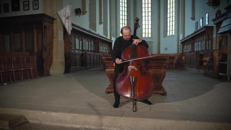 1007 J. S. Bach - Cello Suite No.1 in G major, BWV 1007 - Petru Iuga, double bass
