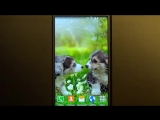 Милые щенки - красивые живые обои для телефонов и планшетов