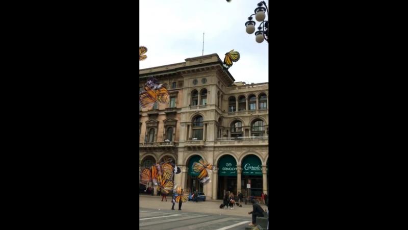 Milan Duomo❤️💫