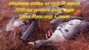 открытие охоты на гуся 28 апреля 2018года татарстан