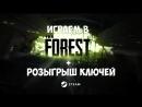 Forest 6 Танцуем с аборигенами Розыгрыш ключей Steam (Игровой стрим 110)
