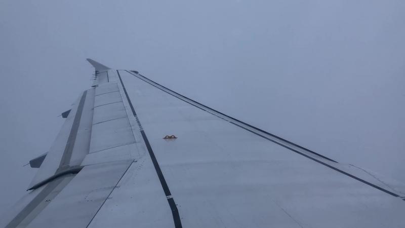 Посадка на Airbus A320-214 в аэропорту Франкфурт на Майне (EDDF)