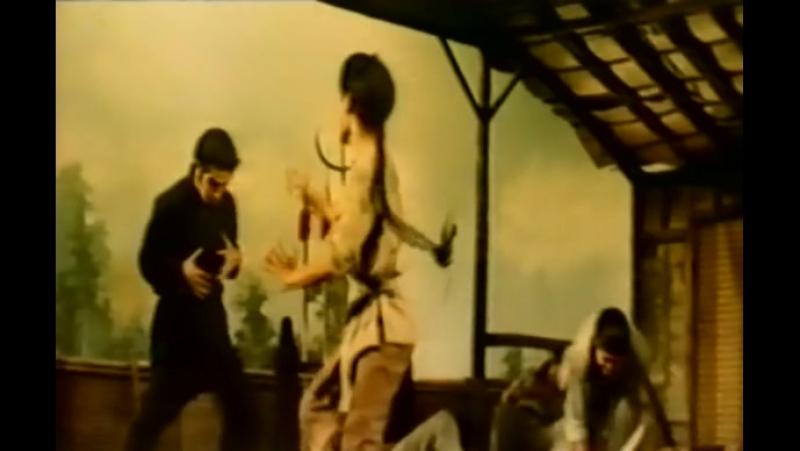 1976 - Блудный боксёр 2 (Выход ураганного боксёра) Chuan ji Fang Shi Yu