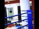 Кикбоксинг спорт ударный