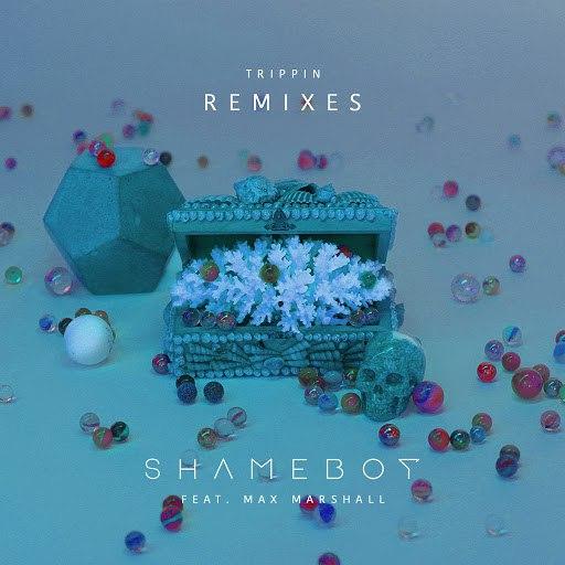 Shameboy альбом Trippin (Remixes) (Remixes)