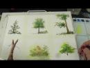 Очень подробно Как Рисовать Деревья Акварелью. How to paint the trees in watercolour Tatjana Baker