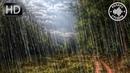 Дождь с грозой и громом 3 часа. Белый шум для сна и релакса