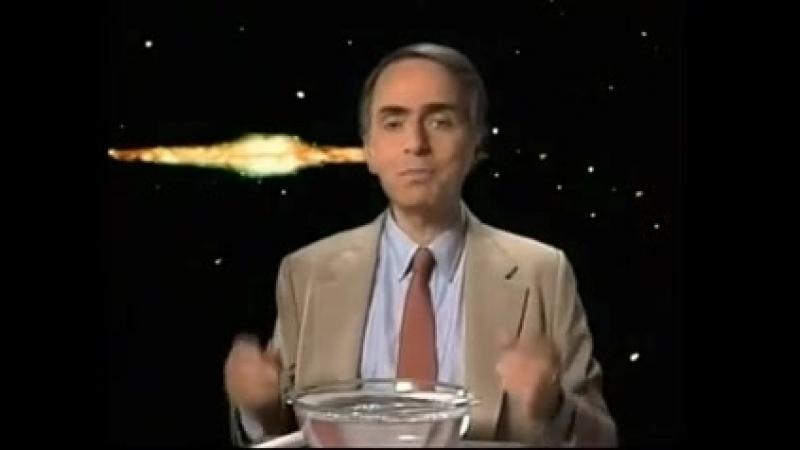 Cosmos - Carl Sagan - Cap. 10 El filo de la eternidad (1980)