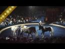 2018.08_Hungary circus_s15.09_10s
