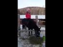 Любимые муж Павлуша и лошадушки ❤