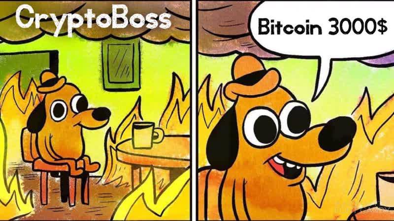 Bitcoin 3 000? ОБВАЛ БИТКОИНА! КРАХ КРИПТОРЫНКА! CryptoBossCoin