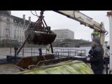 #Londonблог: как Темзу очищают от мусора
