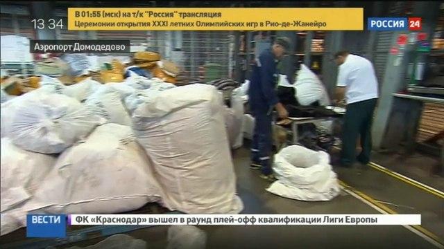 Новости на «Россия 24» • Через аэропорт Домодедово пытались ввезти 3 тонны контрабандных шуб