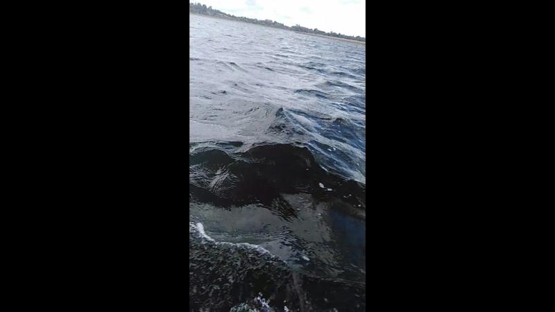 Озеро Полозерье. Рыбалка на спиннинг.