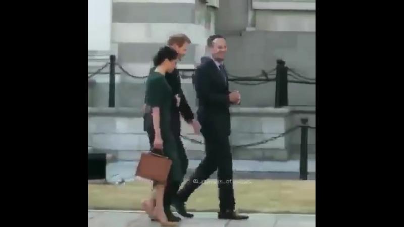 Прием у премьер - министра Ирландии в здании правительства