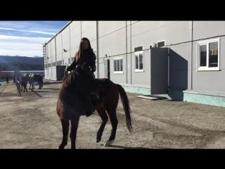 С лошадьми главное- взаимопонимание. Люблю свою работу 😉 #телеведущая#ялюблюсвоюработу#первыйканал