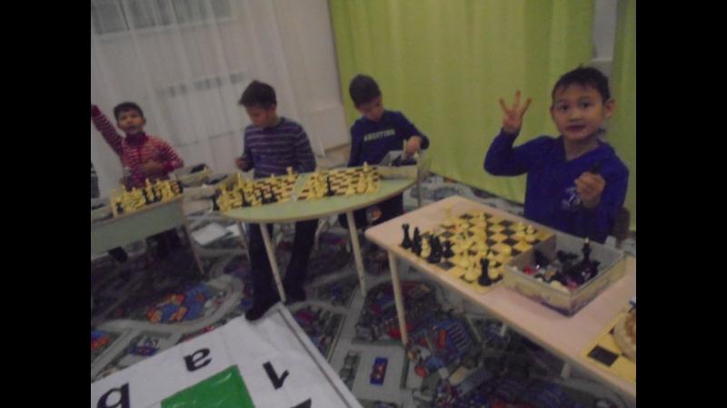 Ясная поляна, Тенистая-2 шахматыомск