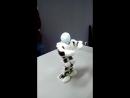 Робот - боксёр