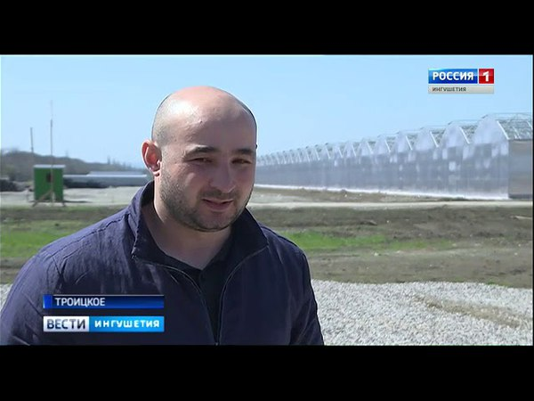 Проект тепличного комплекса площадью 104 гектара в Ингушетии A SERA GROUP
