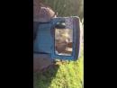 Едем на тракторе за грибами! Трэш, угар Рашен стайл