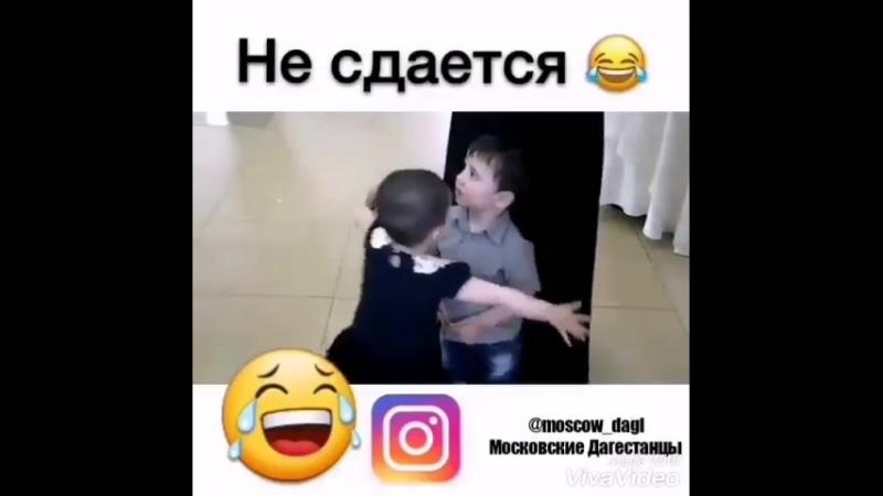 Rodina_kavkaz_video_1527012541778.mp4