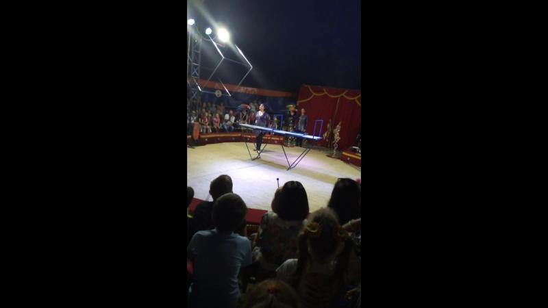 Попугаи на арене. циркОстрогожск очень интересно было 😂