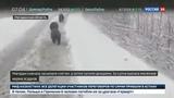 Новости на Россия 24 Буйство стихии на Колыме под воду уходят дома и дороги