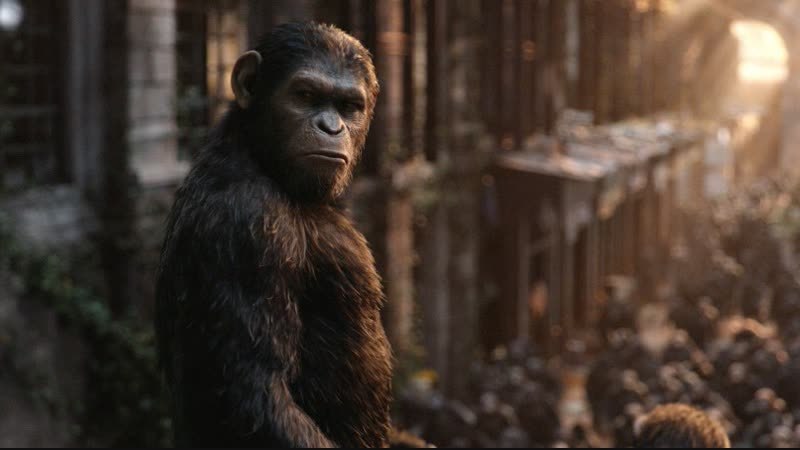Планета обезьян Революция (2014)