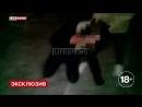 V-s.mobiОСОБОЕМНЕНИЕШкольницыснялинавидеожестокоеизбиениеподруги.mp4