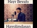 Скачать Akmal Xolxodjayev - Hayr bevafo hayolimdasan (Cover Shoxrux) - смотр.mp4