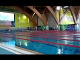 Соревнования по плаванию.