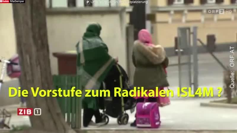 Sie wollen sich einfach NICHT Integrieren- 🔥 Islamvertreter protestieren -orf