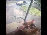 Мужчина ударил ножом в спину девушке, просто так
