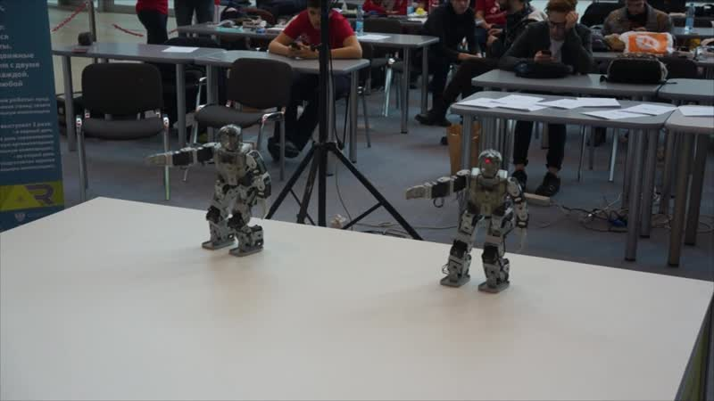 Programmable humanoid robots