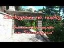 Экскурсии по парку санатория Кирова. Земляничное дерево или Бесстыдница
